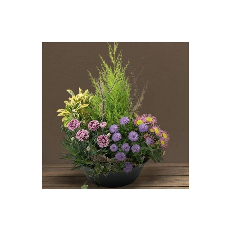 Petite coupe de plante deuil bosquet for Envoi fleurs deuil