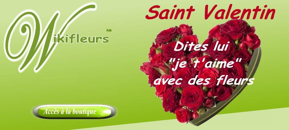 Livraison fleurs st valentin wikifleurs for Fleurs envoyer pas cher