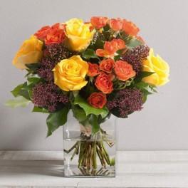 Bouquet de roses panache dom exo for Livraison fleurs rennes