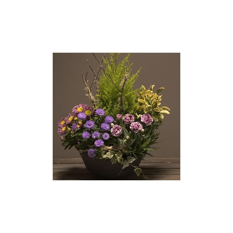 petite coupe de plantes deuil interflora corse. Black Bedroom Furniture Sets. Home Design Ideas